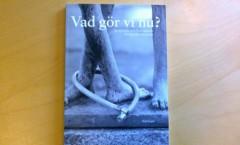 Vad_gör_vi_nu 001